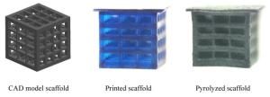 Scaffold_PD