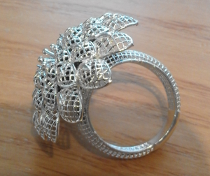 Imamovic Big Ring